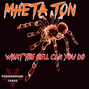 MHETA TON - What The Hell Can You Do