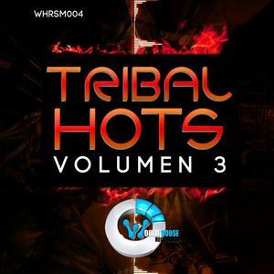 VARIOUS - Tribal Hots 3