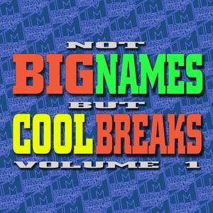 PREDATORY MEERKATS/WOLCA/SYNTHAGER/ALEX VAN ORTON/VARENNIKOFF/PREDATORY MEERKATS - Not Big Names But Cool Breaks Vol 1