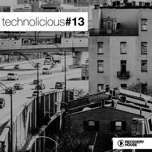 VARIOUS - Technolicious Vol 13