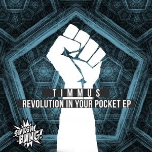 TIMMUS - Revolution In Your Pocket