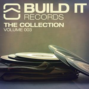 VARIOUS - Build It Records/The Collection Vol 3