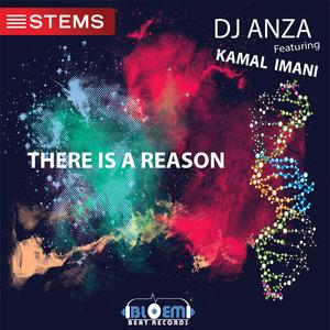DJ ANZA feat KAMAL IMANI - There Is A Reason