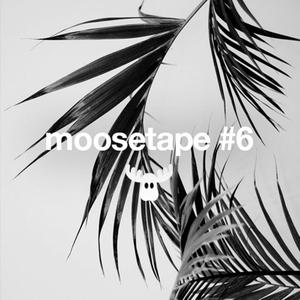 VARIOUS - Moosetape Vol 6