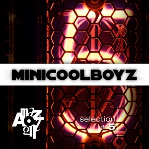VARIOUS - MiniCoolBoyz Selection N' 5