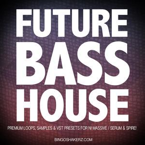 BINGOSHAKERZ - Future Bass House (Sample Pack WAV/Presets)