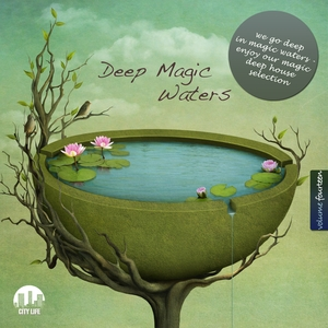 VARIOUS - Deep Magic Waters Vol 14