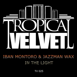 IBAN MONTORO/JAZZMAN WAX - In The Light