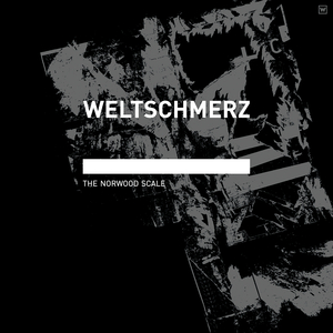 WELTSCHMERZ - The Norwood Scale