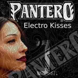VARIOUS - Pantero/Electro Kisses Vol 1