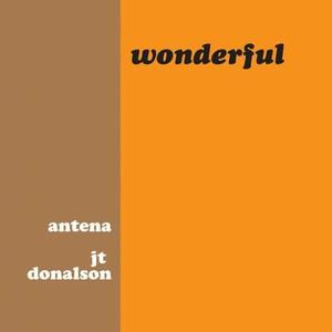 ANTENA/JT DONALDSON - Wonderful
