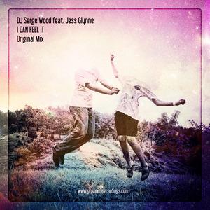 DJ SERGE WOOD feat JESS GLYNNE - I Can Feel It