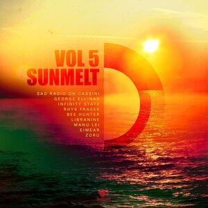 VARIOUS - Sunmelt Vol 5