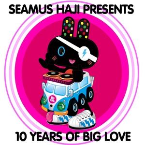 SEAMUS HAJI/VARIOUS - Seamus Haji Presents 10 Years Of Big Love (unmixed tracks)