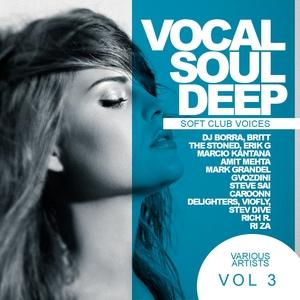 VARIOUS - Soft Club Voices Vol 3 (Vocal Soul Deep)