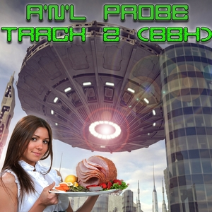 A'N'L PROBE - Track 2 (BBH)
