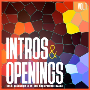 VARIOUS - Intros & Openings Vol 1 (Great Selection Of Intros & Opening Tracks)