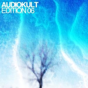 VARIOUS - Audiokult Edition 06