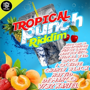 VARIOUS - Tropical Punch Riddim