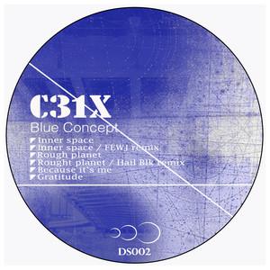 C31X - Blue Concept