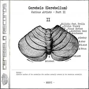 VARIOUS - Cerebelo Records 2016 Vol 2