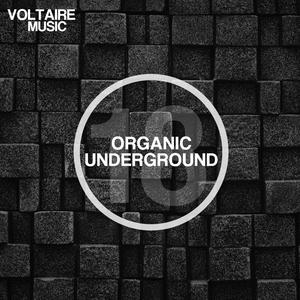 VARIOUS - Organic Underground Issue 18