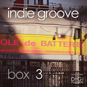VARIOUS - Indie Groove Box Vol 3