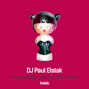 DJ PAUL ELSTAK - The Promised Land (The Viper Remix)