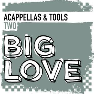 VARIOUS - Big Love Acappellas & Tools 2