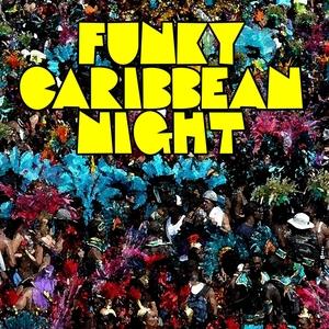 VARIOUS - Funky Caribbean Night