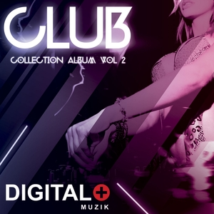 VARIOUS - Club Collection Vol 2
