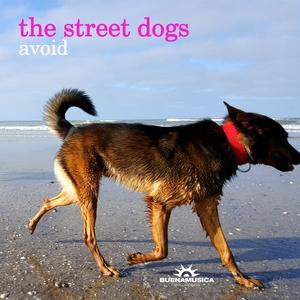 THE STREET DOGS - Avoid