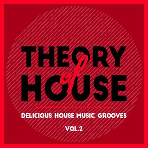 VARIOUS - Theory Of House (Delicious House Music Grooves) Vol 2