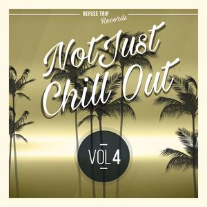 VARIOUS - Not Just Chill Out Vol 4