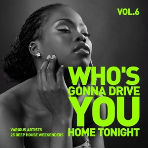 VARIOUS - Who's Gonna Drive You Home Tonight (25 Deep-House Weekenders) Vol 6