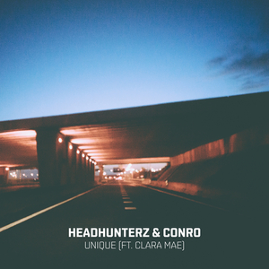 HEADHUNTERZ & CONRO feat CLARA MAE - Unique