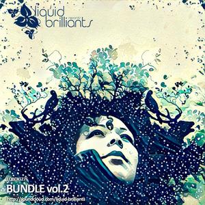 VARIOUS - Bundle Vol 2