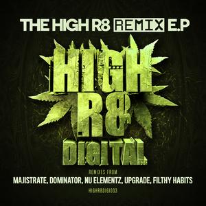 HOOGS/NU ELEMENTZ/SUB KILLAZ/FILTHY HABITS/DUB BERZERKA - The High R8 Remix