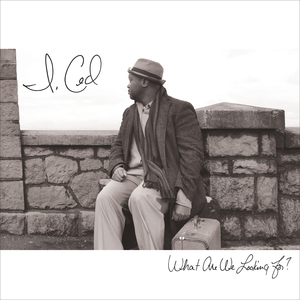 CED/I - What Are We Looking For?
