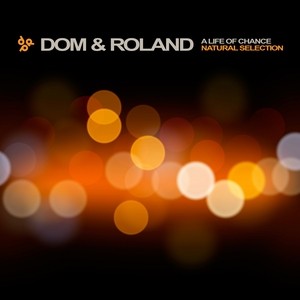 DOM & ROLAND - A Life Of Chance