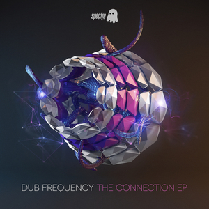 DUB FREQUENCY - The Connection