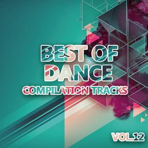 VARIOUS - Best Of Dance Vol 12