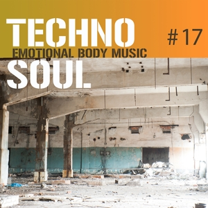 VARIOUS - Techno Soul #17 (Emotional Body Music)