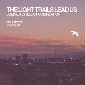 VARIOUS - The Light Trails Lead Us