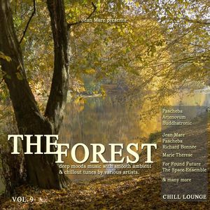 VARIOUS - The Forest Chill Lounge Vol 9 (Deep Moods Music With Smooth Ambient & Chillout Tunes)