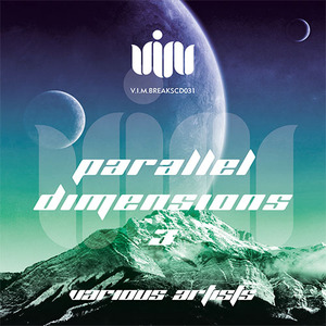VARIOUS - Parallel Dimensions 3
