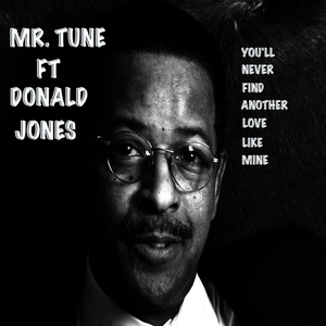 MR TUNE feat DONALD JONES - You'll Never Find Another Love Like Mine