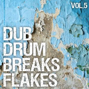VARIOUS - Dub Drum Breaks Flakes Vol 5