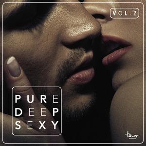 VARIOUS - Pure Deep Sexy Vol 2