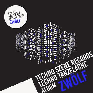 VARIOUS - Techno-Tanzflache (Album Zwolf)